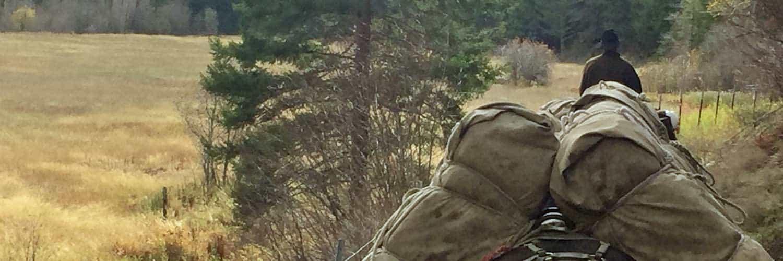 Elk Hunting Pack Trips in Rock Creek