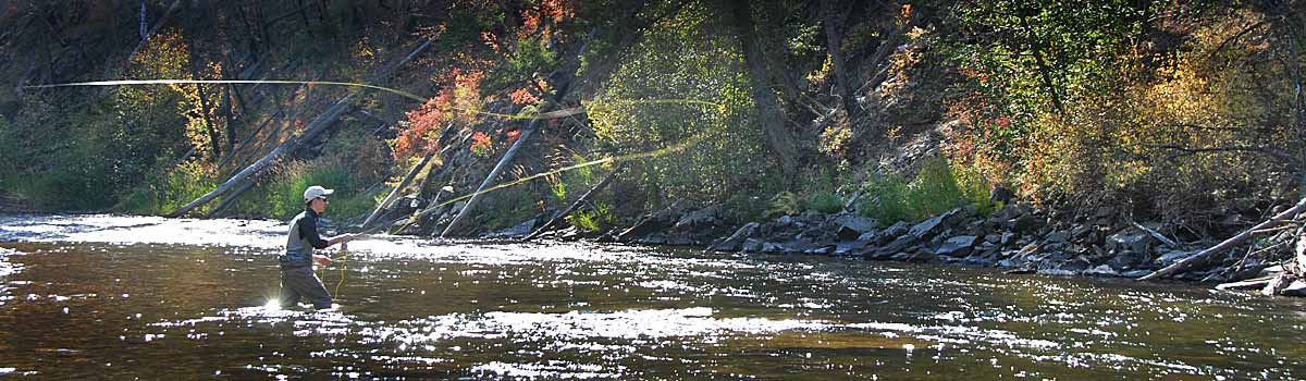 Fishing Rock Creek in Montana