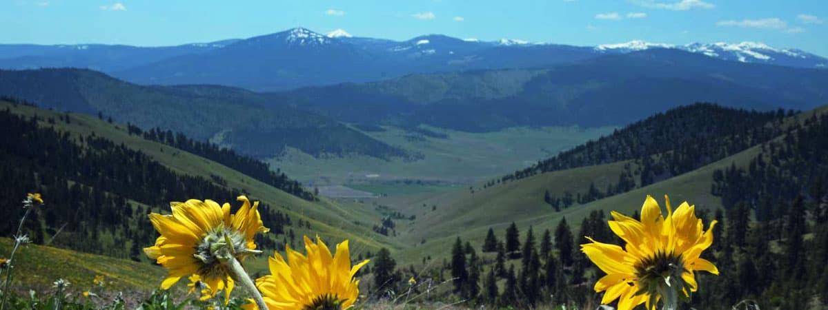 Montana vacation on Rock Creek