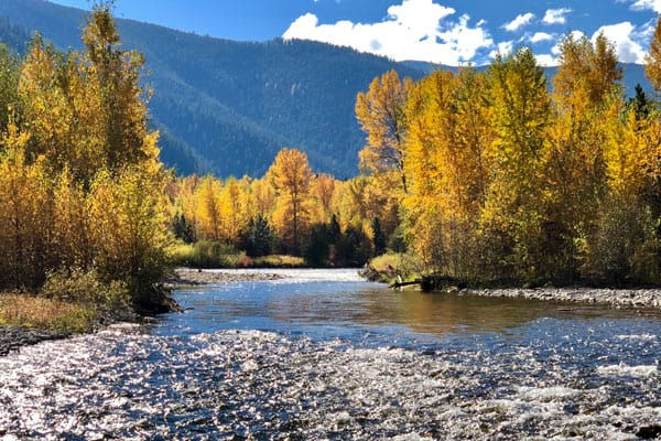 Fly Fishing Rock Creek Montana in September