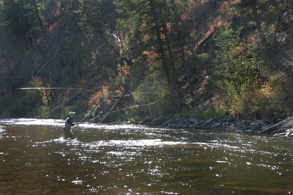 Rock Creek Fisher Casting