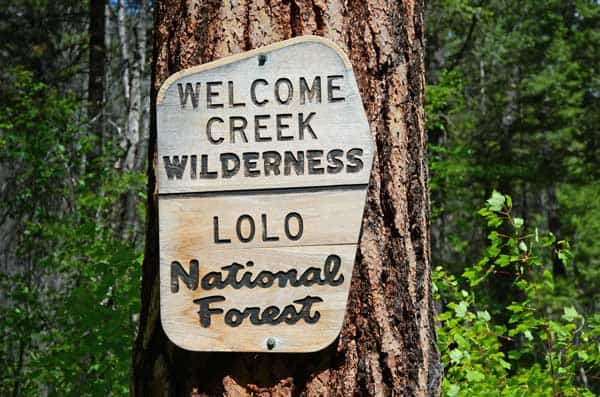 Welcome Creek Wilderness in Lolo National FOrest