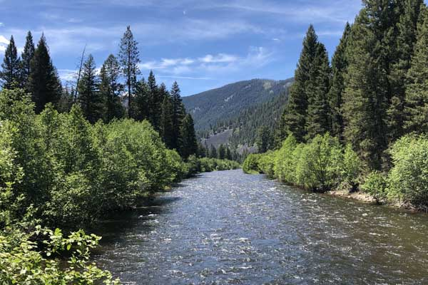 June River Flows on Rock Creek