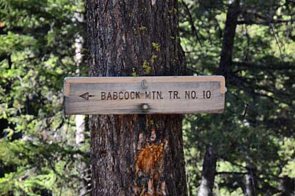 Trail 10 Babcock Mountain Sign