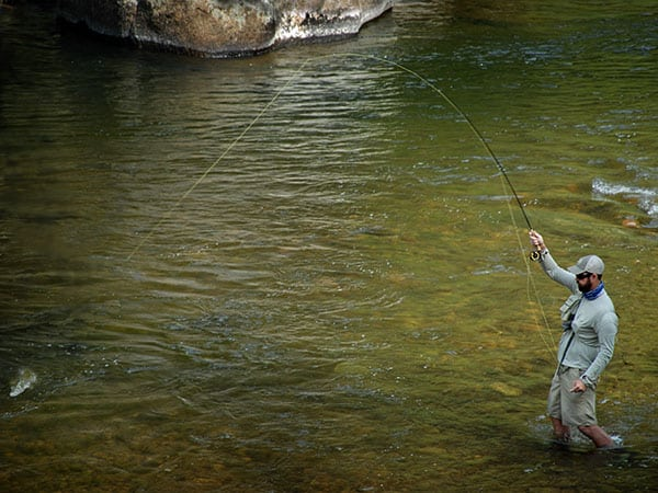 Catching Trout in Rock Creek in August