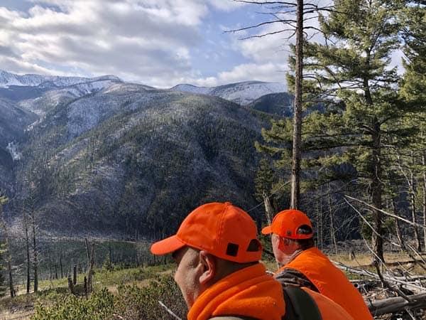 Deer hunts and Elk hunts near Missoula Montana