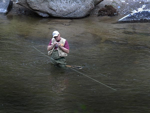 Tying on a Fly While Fishing Rock Creek